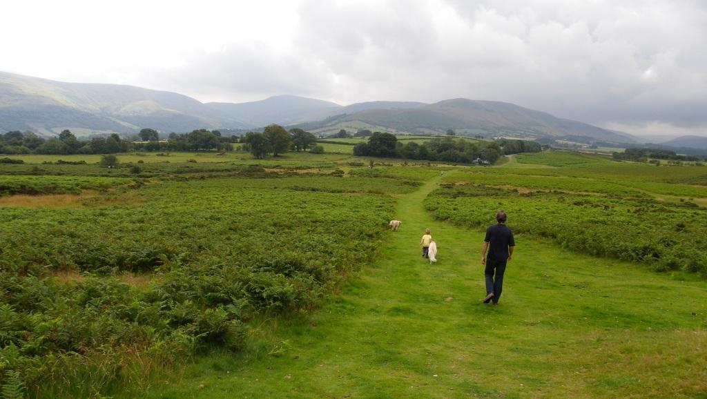 Brecon Beacons Mountain Centre Dog Walking paths and tracks