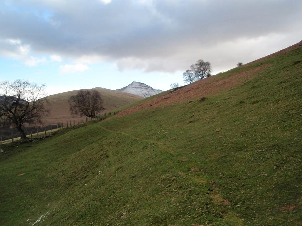 Brecon Beacons Mountains Dog Walking countryside
