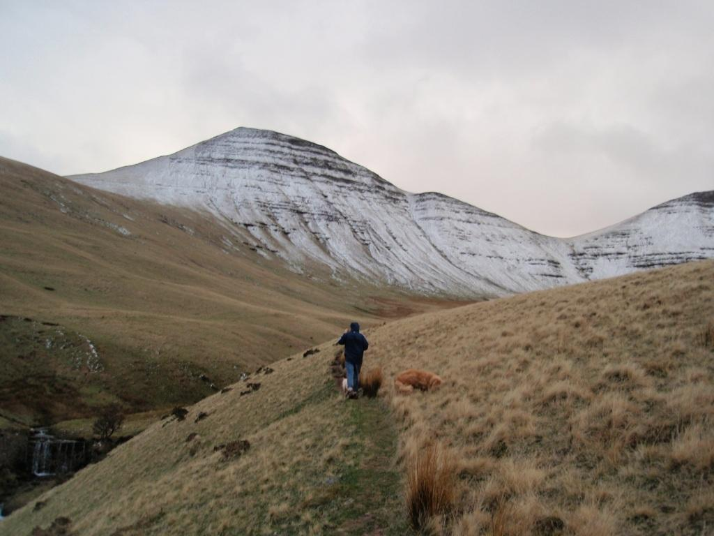 Brecon Beacons Mountains Dog Walking towards snow-capped mountains