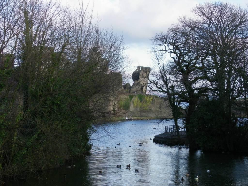 Caerphilly Castle and moat through trees