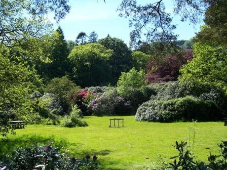 Dog Friendly B&B - Craig y Nos Country Park in Wales view of rhododendrons from path beside large lake