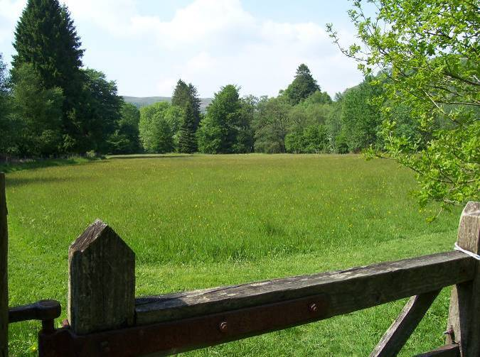 Dog Friendly B&B - Craig y Nos Country Park Meadow in Wales
