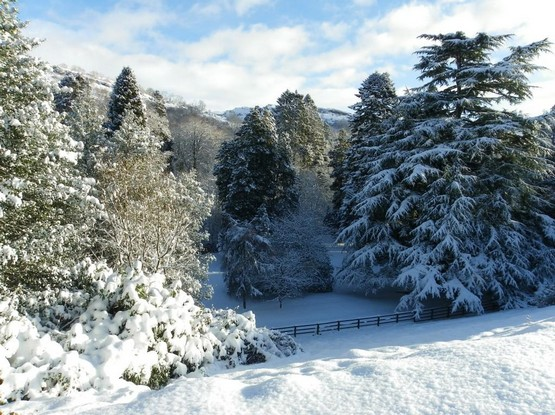 Dog Friendly Wales Craig y Nos Country Park in winter snow viewed from Castle