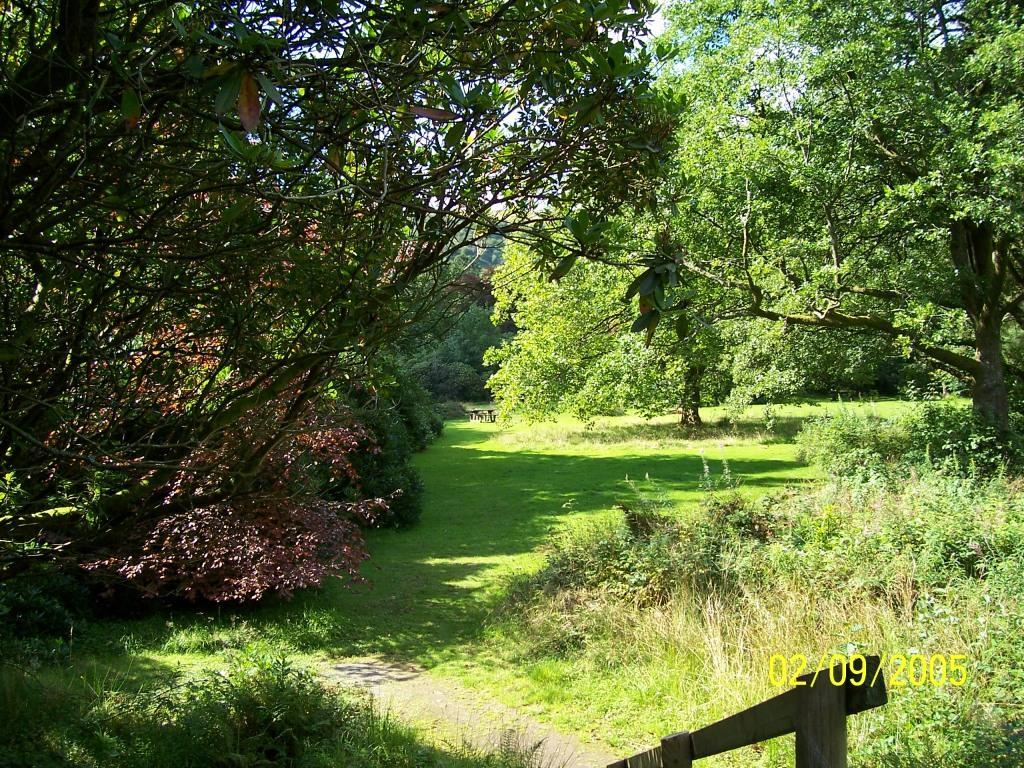 Dog Friendly Holidays Brecon Wales Craig y Nos Country Park beside big lake
