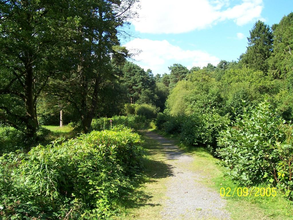 Dog Friendly Holidays Brecon Wales Craig y Nos Country Park path alongside big lake