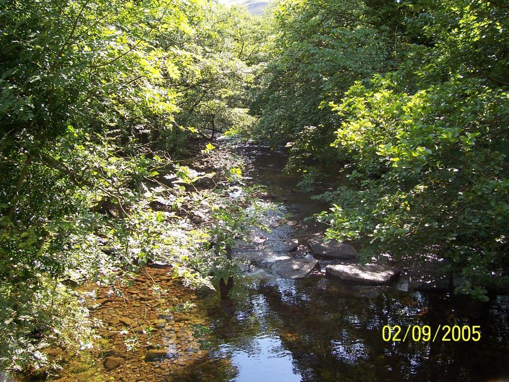 Dog Friendly B&B in Brecon Wales River Tawe Craig y Nos Country Park