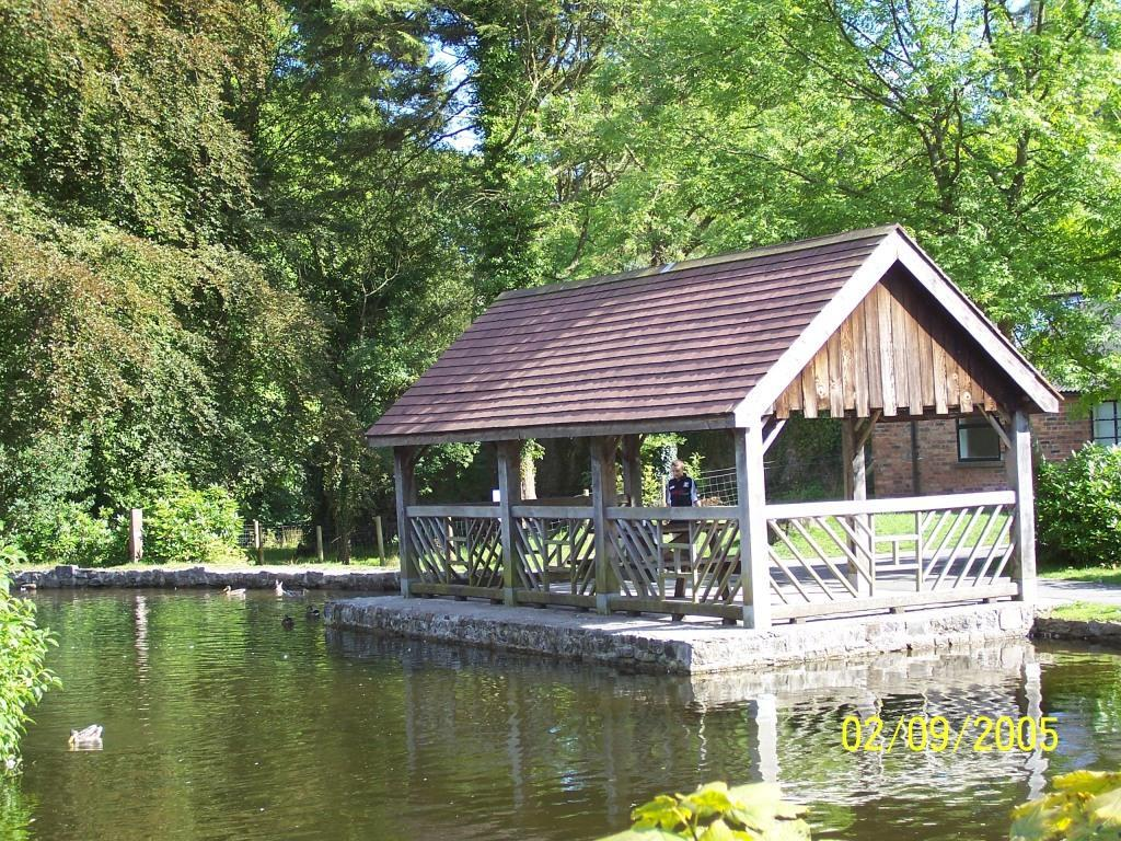 Dog Friendly Walks in Brecon Beacons National Park Wales Craig y Nos Country Park Boating Lake