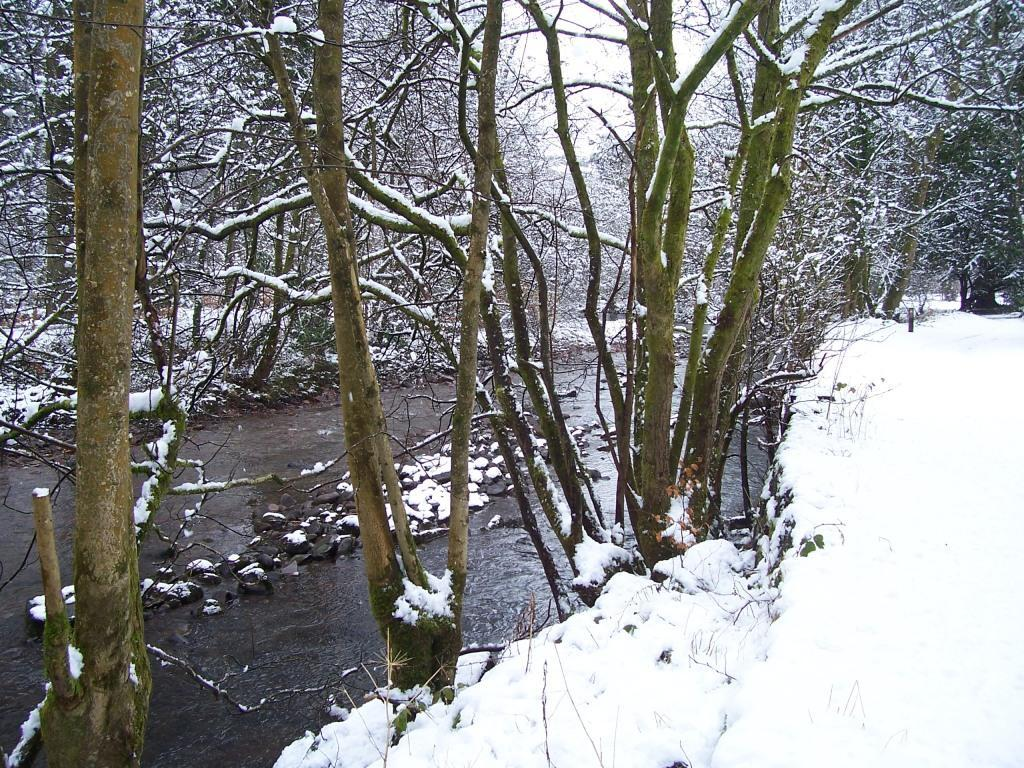 Dog Friendly Hotel Swansea Wales Craig y Nos Country Park river Tawe in Winter Snow