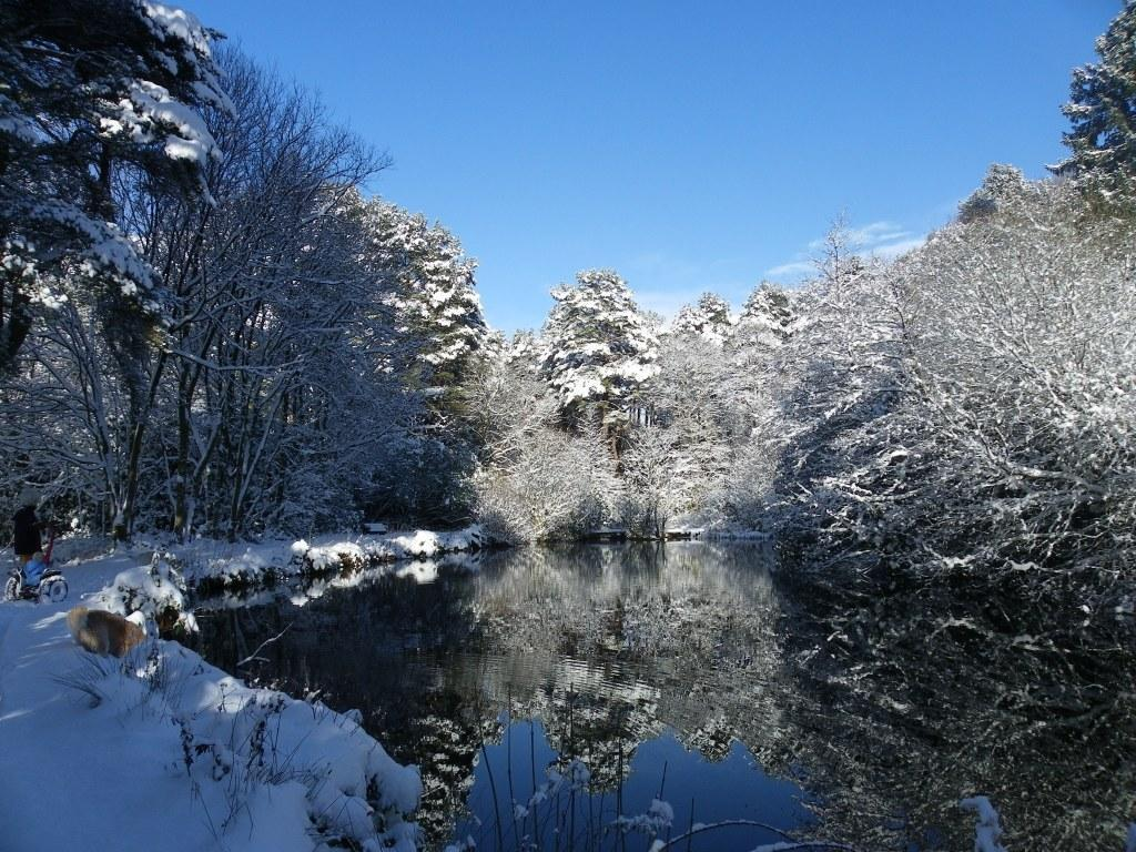 Dog Friendly Hotel Swansea Wales Craig y Nos Country Park blue sky snowy big lake Winter Snow