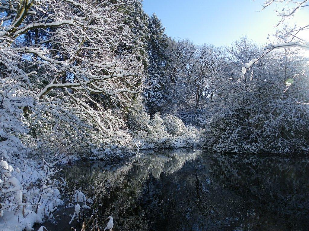 Dog Friendly Hotel Swansea Wales Craig y Nos Country Park big lake with snow covered trees reflected in water