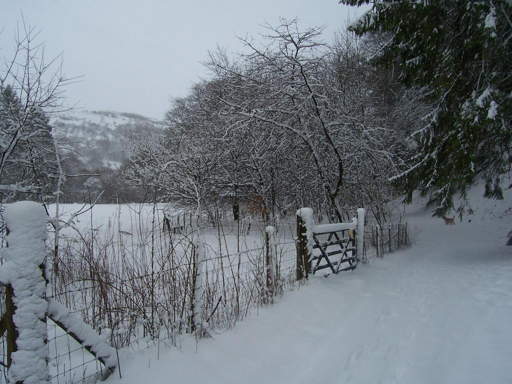 Dog Friendly Hotel Swansea Wales Craig y Nos Country Park path and field gate  in Winter Snow