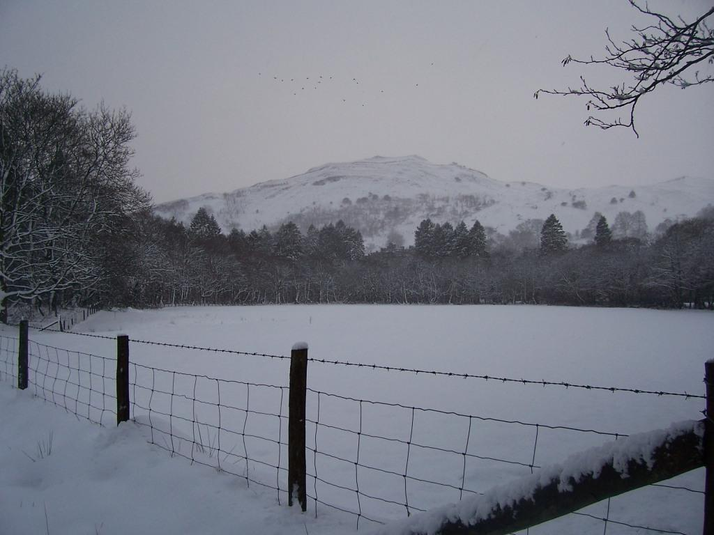 Dog Friendly Hotel Swansea Wales Craig y Nos Country Park view of mountain in Winter Snow