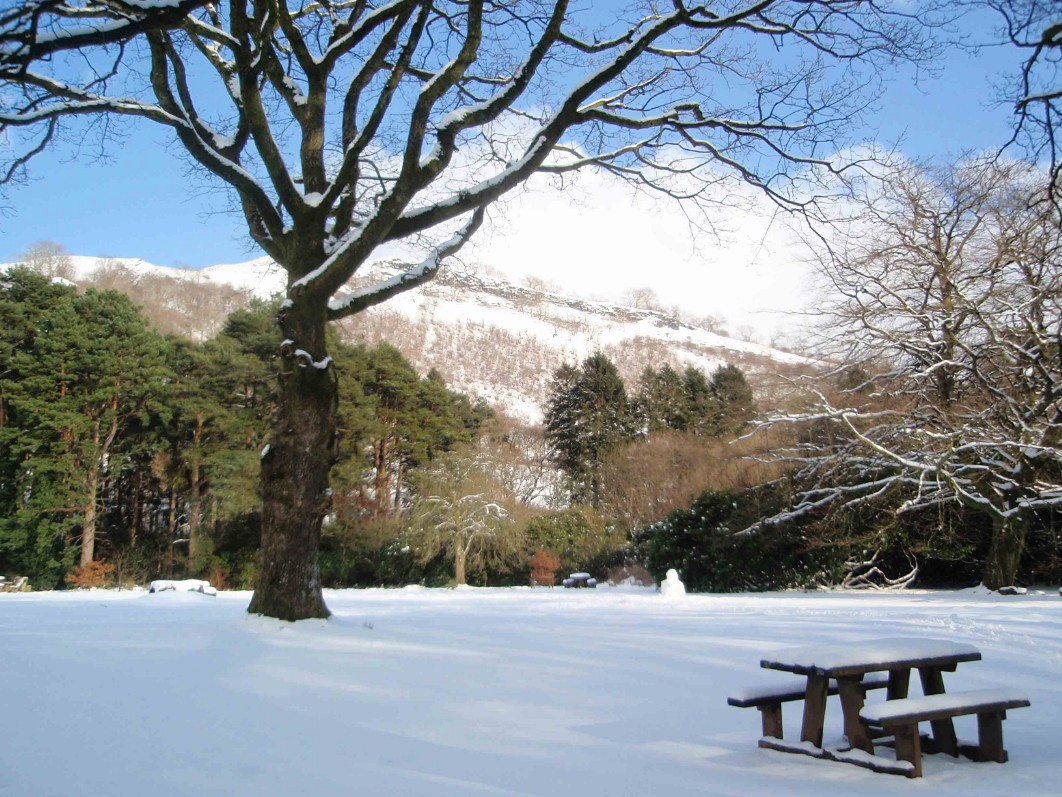 Dog Friendly Hotel Swansea Wales picnic meadow and bench table at Craig y Nos Country Park in Winter Snow
