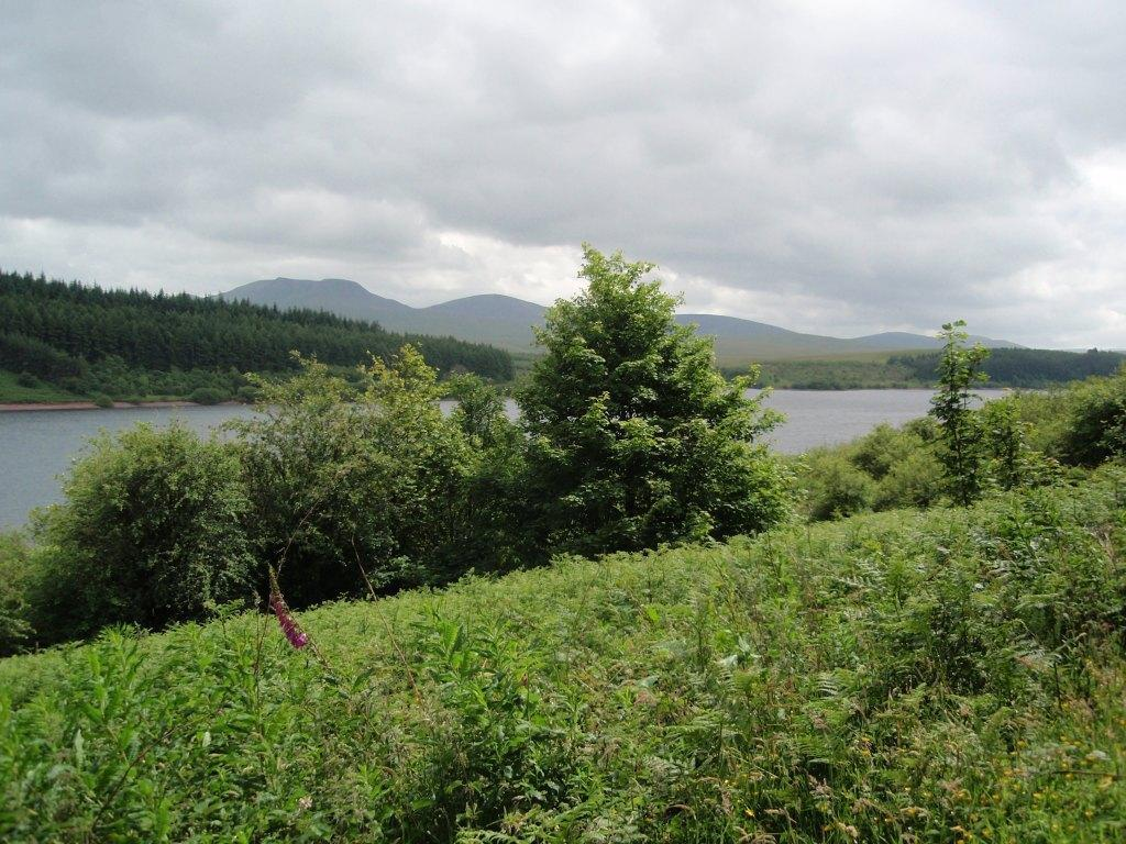 Dog Friendly Hotel Swansea Wales Craig y Nos Usk Reservoir circular Walk
