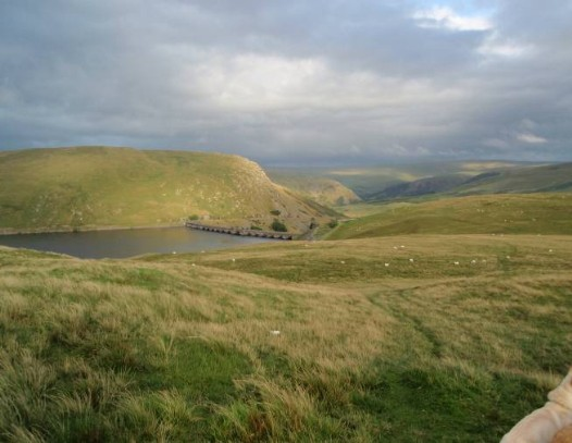 Dog walking Wales -  Elan Village Reservoirs walking above Claerwen
