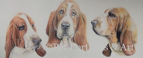 Alice Ladkin dog portraits