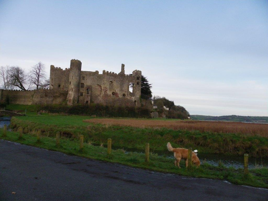 Laugharne Castle Dylan Thomas Dog Friendly Coastal Path Walk
