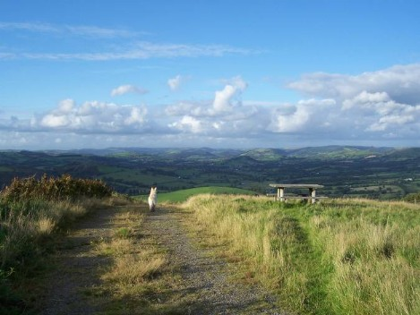 Dog Friendly B&B Wales - a dog's visit to Talley Abbey remote mountain track dog walk with a view of mountains and clouds