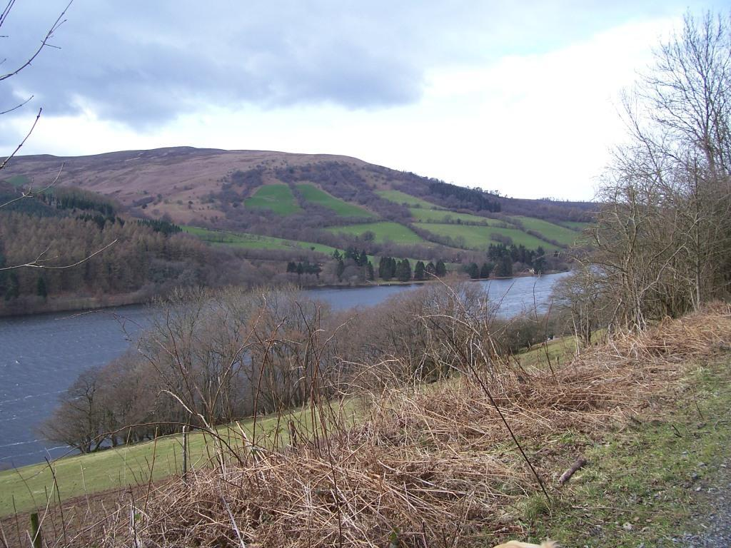 Talybont on Usk Reservoir Dog Walk