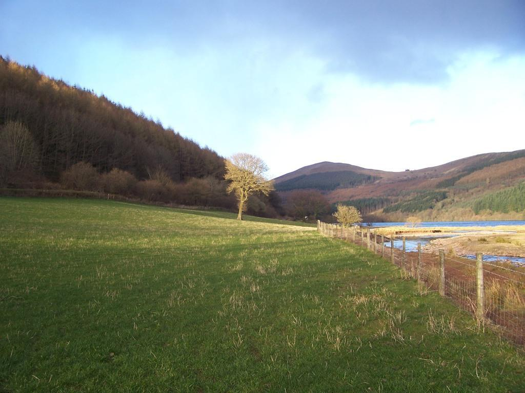 Talybont on Usk Reservoir Circular Dog Walk