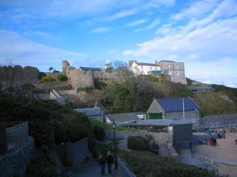 Dog Friendly B&B Wales - a dog's day out in Tenby