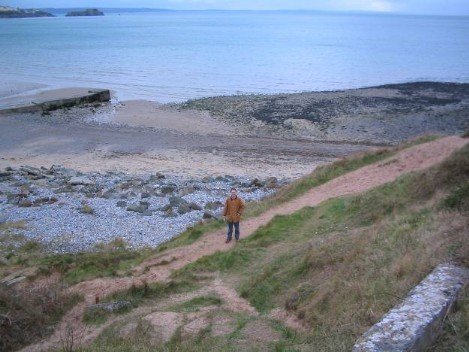 Dog Friendly B&B Wales - a dog's day out in Tenby, sea views