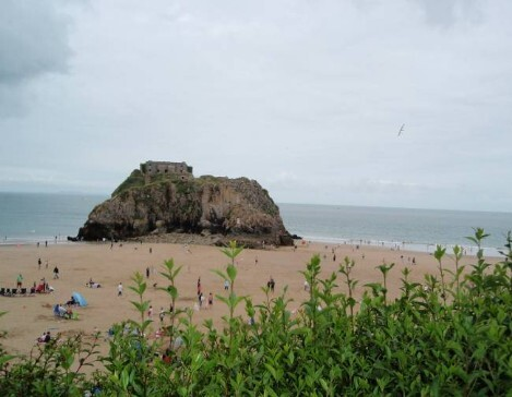 Dog Friendly B&B Wales - a dog's day out in Tenby with rock on the beach