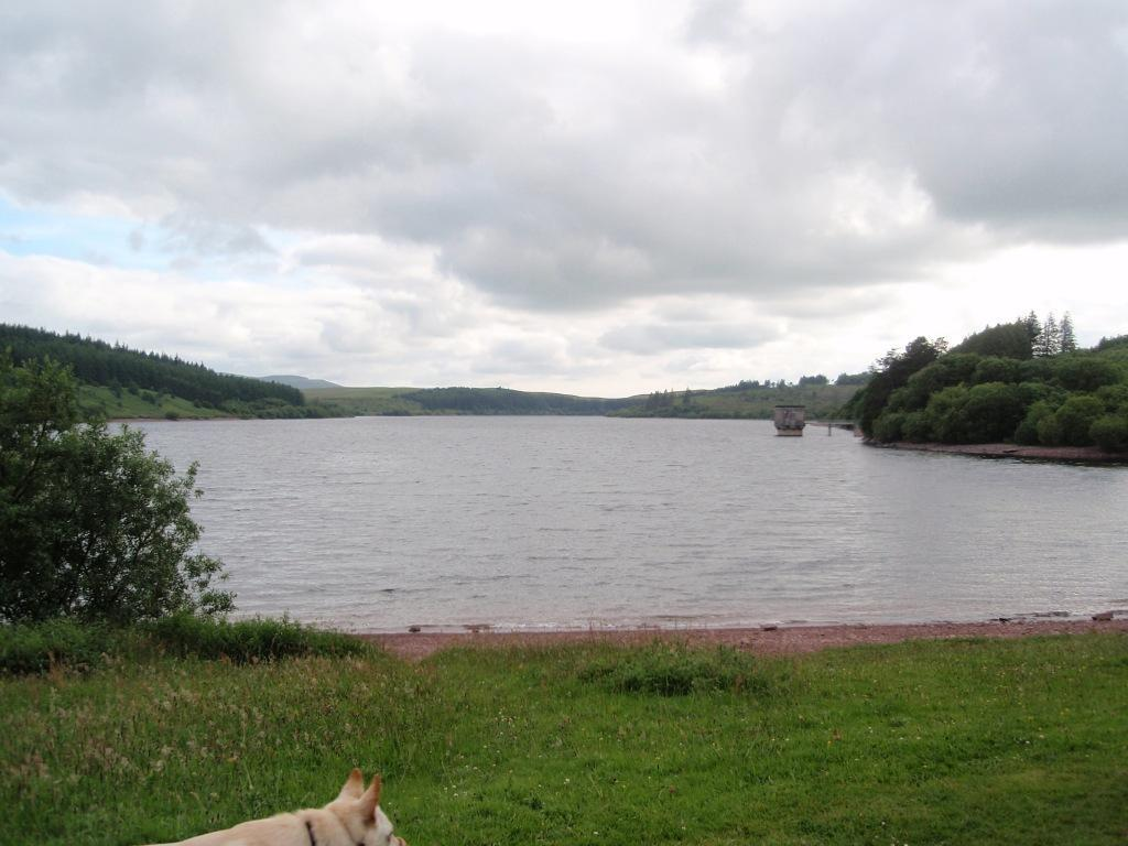 Usk Reservoir Circular Dog Walk beach near dam