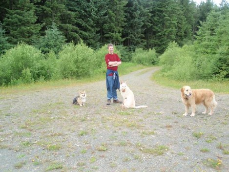 Dog friendly B&B Wales - Usk Reservoir circular dog Walk with Jack and Sheeba and Bryn