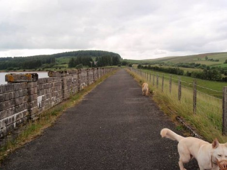 Dog friendly B&B Wales - Usk Reservoir Dog Walk, path on the dam