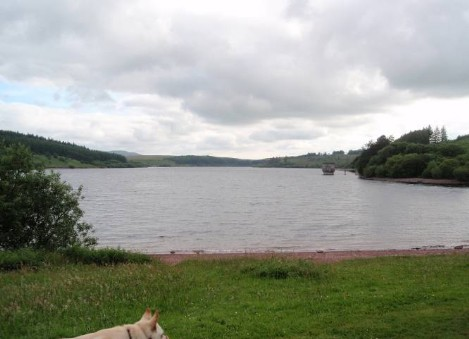 Dog friendly B&B Wales - Usk Reservoir Walk view of water
