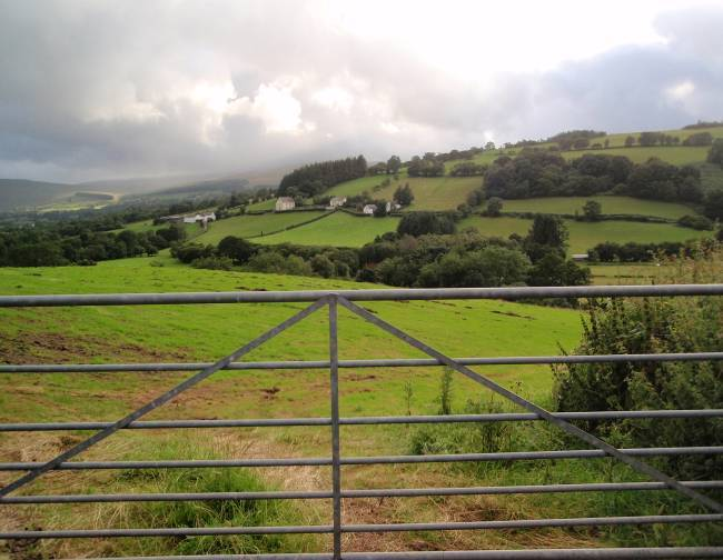 Dog friendly B&B Wales - Usk Reservoir circular Walk field gate and fields