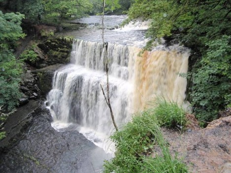 Dog friendly accommodation Wales - Ystradfelte Waterfall dog walk